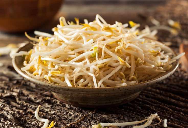 Los brotes de soja tienen mucha proteína