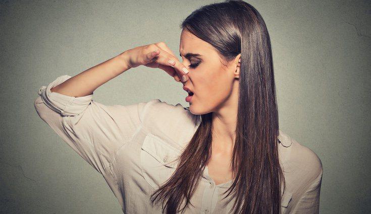 La mala y rápida digestión puede ser una causante del exceso de gases