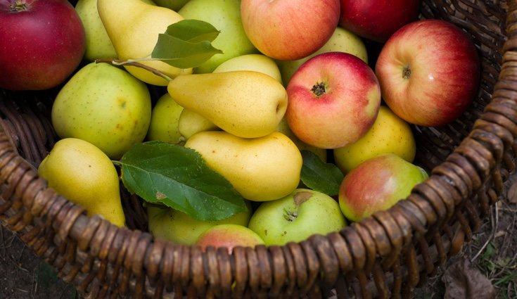La mejor fruta para tomar por la noche es aquella rica en agua, como las peras y las manzanas