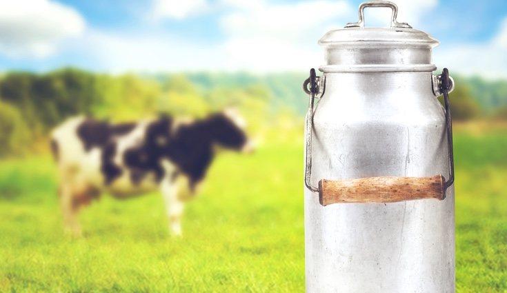La leche de vaca seguramente sea el alimente de origen animal que más se consume