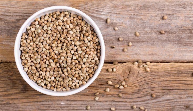 Las semillas son alimentos normalmente muy ricos en Omega 3