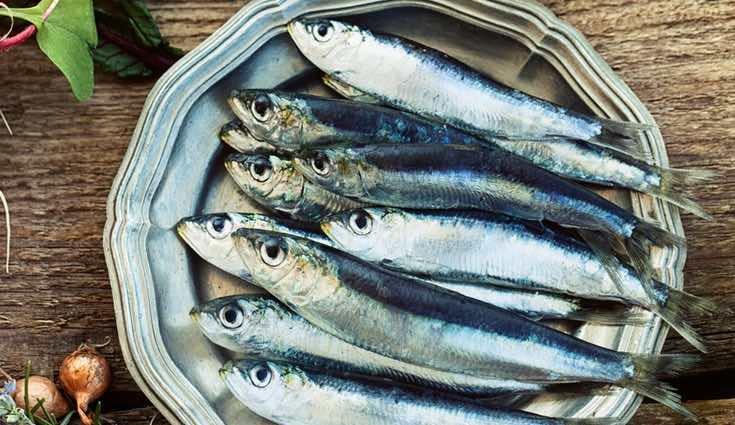 Los pescados azules son los mejores para tu propósito
