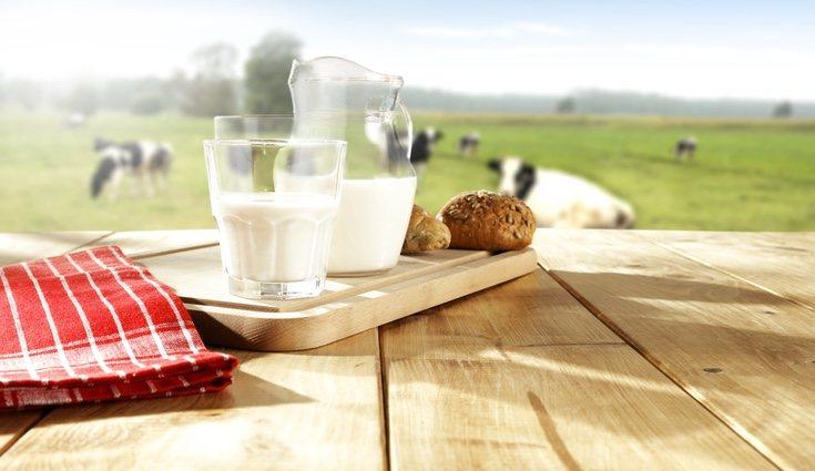 La leche de vaca engorma más porque tiene muchas más grasas