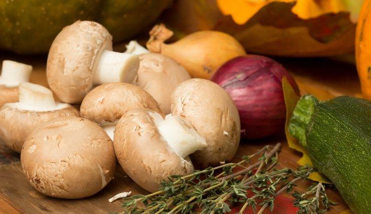 El champiñón es uno de los hongos que más se utiliza en la cocina para crear recetas