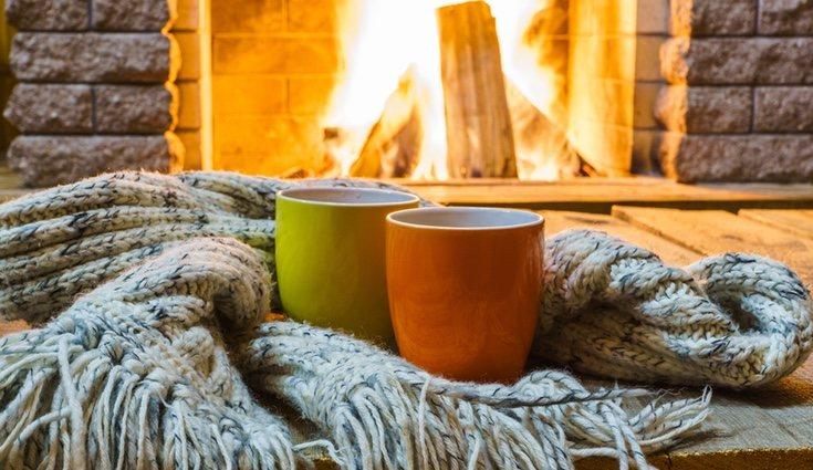Lo ideal en invierno, y en el resto del año, es intercalar todo tipo de alimentos para que nuestras defensas nunca caigan