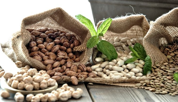 Las legumbres es un alimento ideal para las personas que padecen anemia