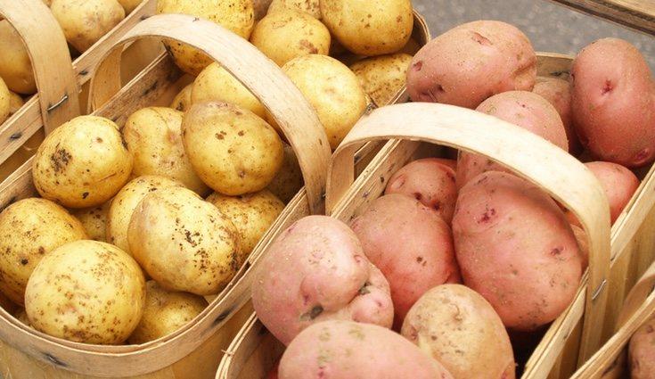 La batata tiene la piel más dura y gruesa, además de tener un color morado