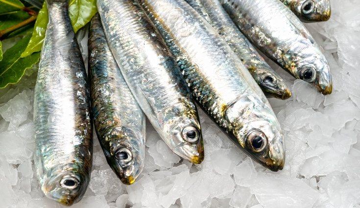 Las sardinas en conserva en aceite de oliva son las mejores respecto al calcio