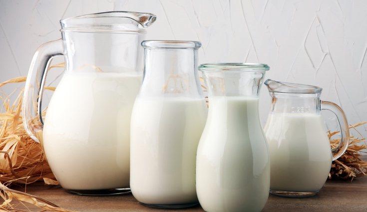 La leche aporta calcio, magnesio y fósforo, siendo ideal para el cuidado de los huesos