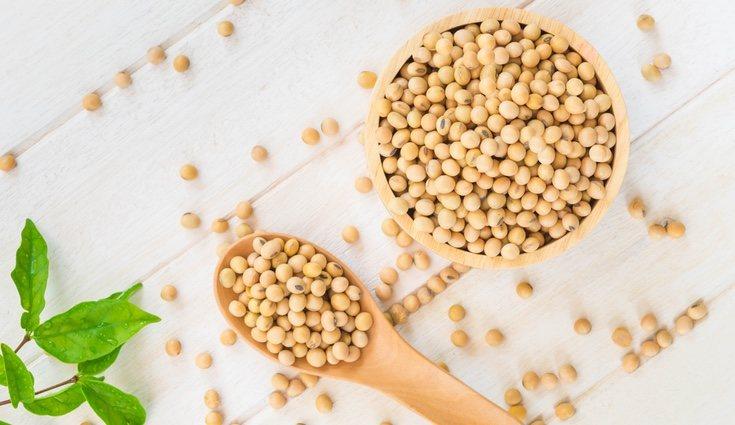 La soja es una de las legumbres más ricas en calcio