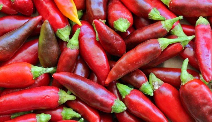 Los chiles son un increíble aporte de vitamina C