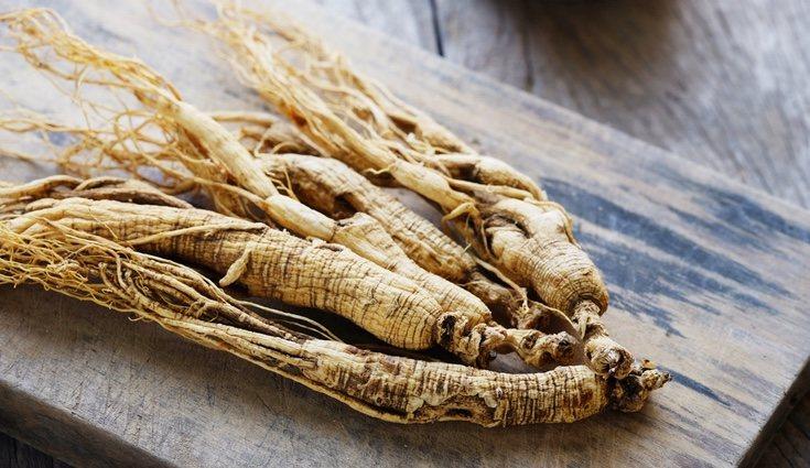 Las raíces del ginseng se vinen utilizando desde la Antigüedad como remedio natural