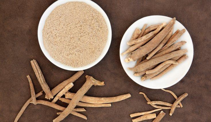 El ginseng siberiano puede encontrarse en polvo, píldora o de forma líquida