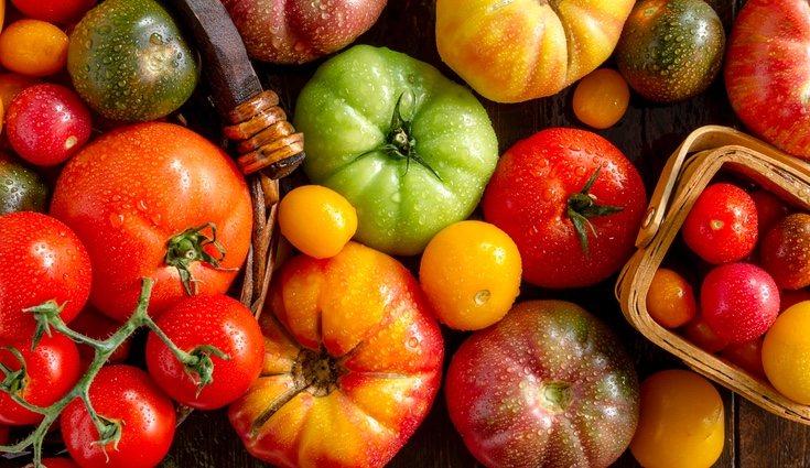 Existen además una gran variedad de tomates para ir cambiando