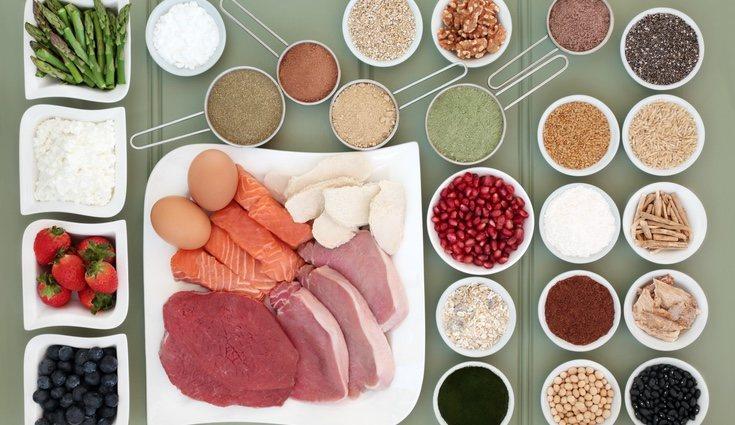 Las proteínas tienen numerosas funciones ayudando a nuestro metabolismo