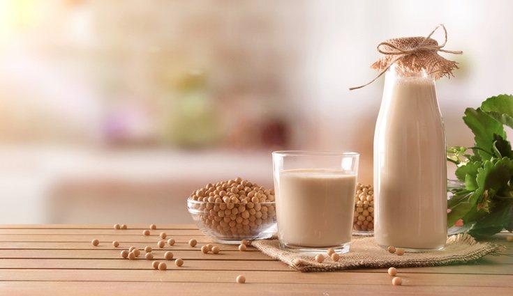 Hay muchas más alternativas a la leche de vaca teniendo otras animales o vegetales