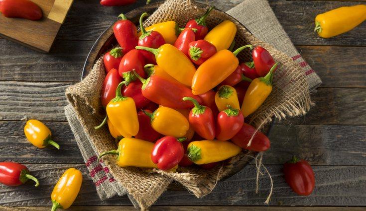 Los pimientos son uno de los ingredientes principales en la dieta española