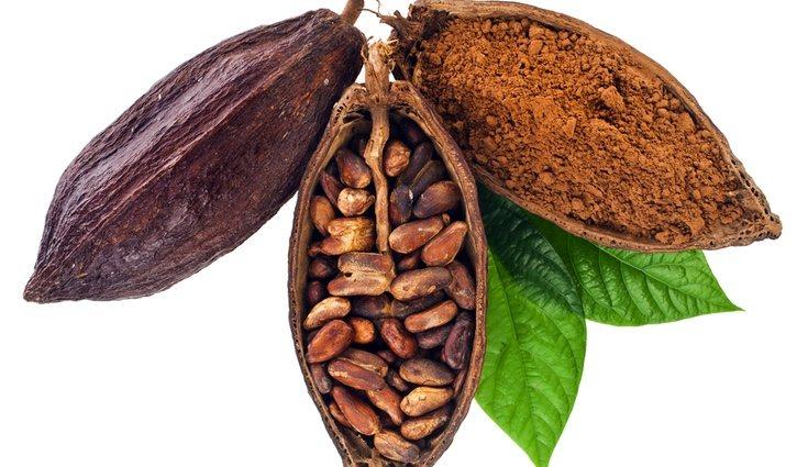 El cacao puro tiene un sabor más bien amargo, por lo que no a todo el mundo le gusta