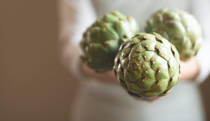 Las alcachofas híbridas se pueden recoger hasta el mes de noviembre